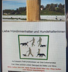 Genderwahnsinn für Hundehalter*innen
